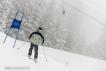 Ski 3520