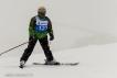 Ski 3521