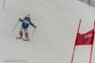 Ski 3524