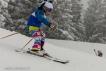 Ski 3529