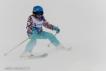 Ski 3535