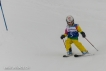 Ski 3540