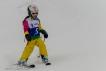 Ski 3541