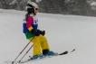 Ski 3542