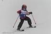 Ski 3544