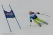 Ski 3547