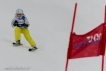 Ski 3549
