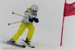 Ski 3550