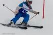 Ski 3554