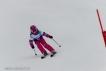 Ski 3555