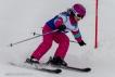 Ski 3556