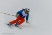 Ski 3558