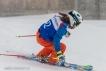 Ski 3560
