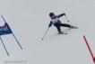 Ski 3563