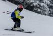 Ski 3579