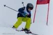 Ski 3593