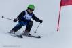 Ski 3596