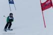Ski 3598