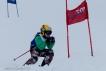 Ski 3604