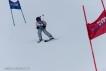 Ski 3605