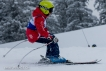 Ski 3611
