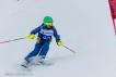 Ski 3612
