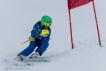 Ski 3613
