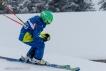 Ski 3615
