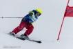 Ski 3622