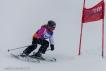 Ski 3626