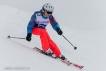 Ski 3630