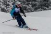Ski 3639