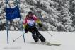 Ski 3641