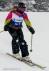 Ski 3642
