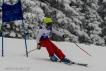 Ski 3644
