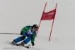 Ski 3646