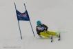 Ski 3651