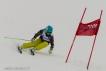 Ski 3652
