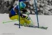 Ski 3653