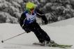 Ski 3659