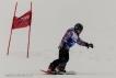 Ski 3665