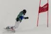 Ski 3669