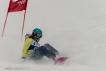 Ski 3686