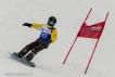 Ski 3691