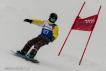 Ski 3692
