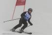 Ski 3713