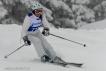 Ski 3720