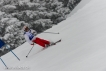 Ski 3723