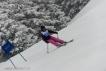 Ski 3726