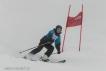 Ski 3732